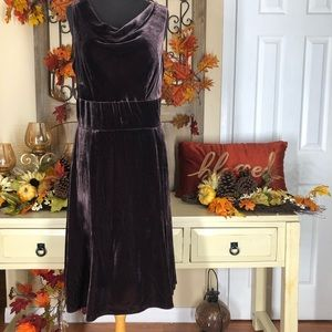 Ann taylor| women's brown velvet dress
